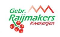 Raijmakers_kwekerijen-2
